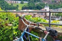 fahrradtour heidelberg 2