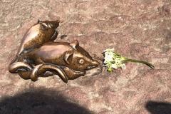 maeuse brueckenaffe heidelberg heidelherz