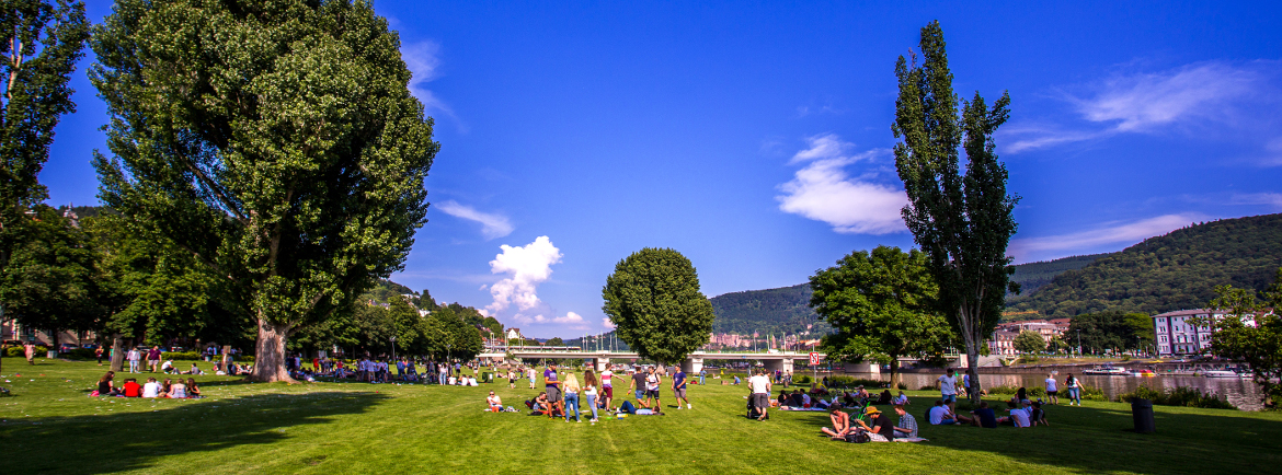 In summer, Heidelbergers love to chill out on the Neckar shore.